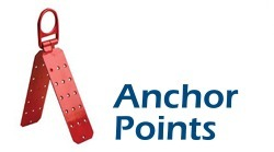 fall arrest anchor points